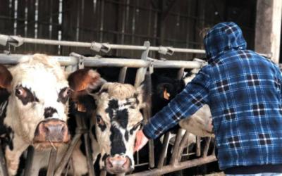 Un glioblastome reconnu comme maladie professionnelle dans le monde agricole !